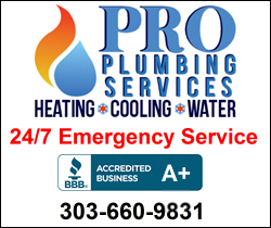 Pro Plumbing Services